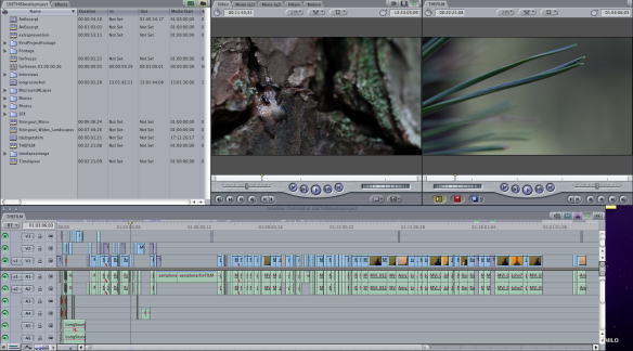 editingcapture